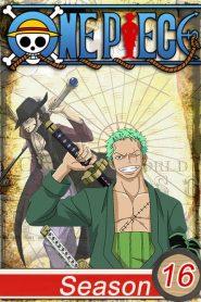 One Piece: Season 16