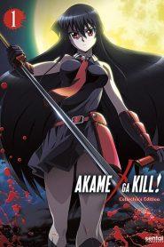 Akame ga Kill!: Season 1